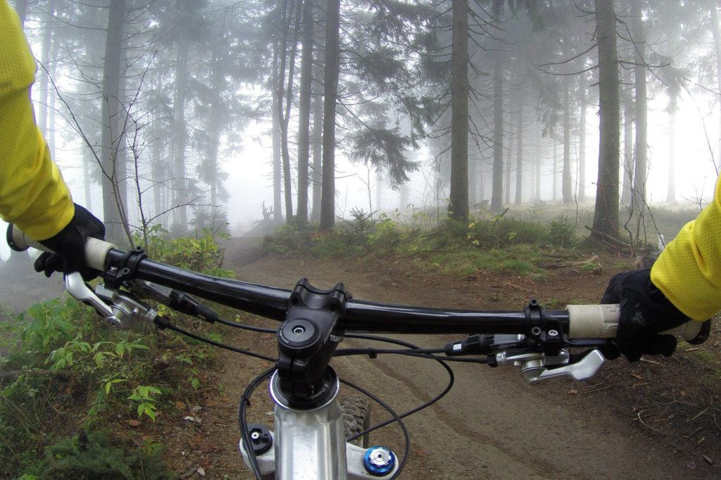 athlete riding bicycle in forest