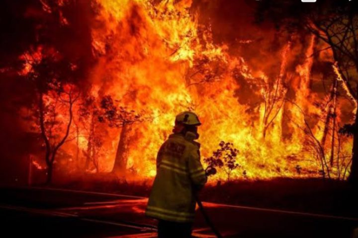Firefighters fighting fires